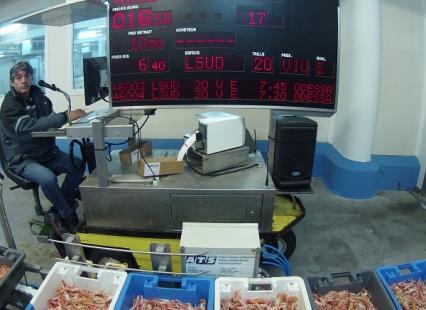 vente aux enchères de la pêche du jour