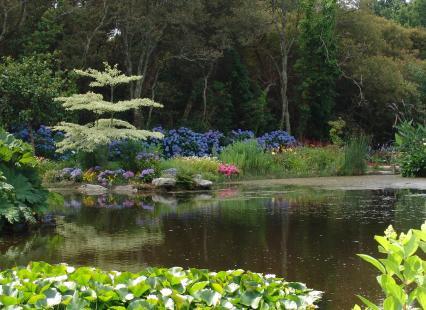 Bassin, parc botanique de Cornouaille
