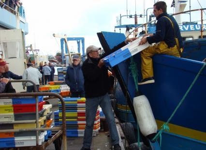 Déchargement du poisson et des crustacés du jour