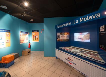 Exposition De La Mer à L'Assiette: Salle de la Poissonnerie