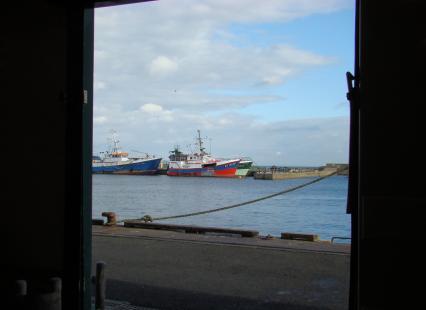 vue sur le port du Guilvinec depuis la salle de ventes aux enchères