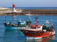 Journée Savourez la Pêche Haliotika Guilvinec